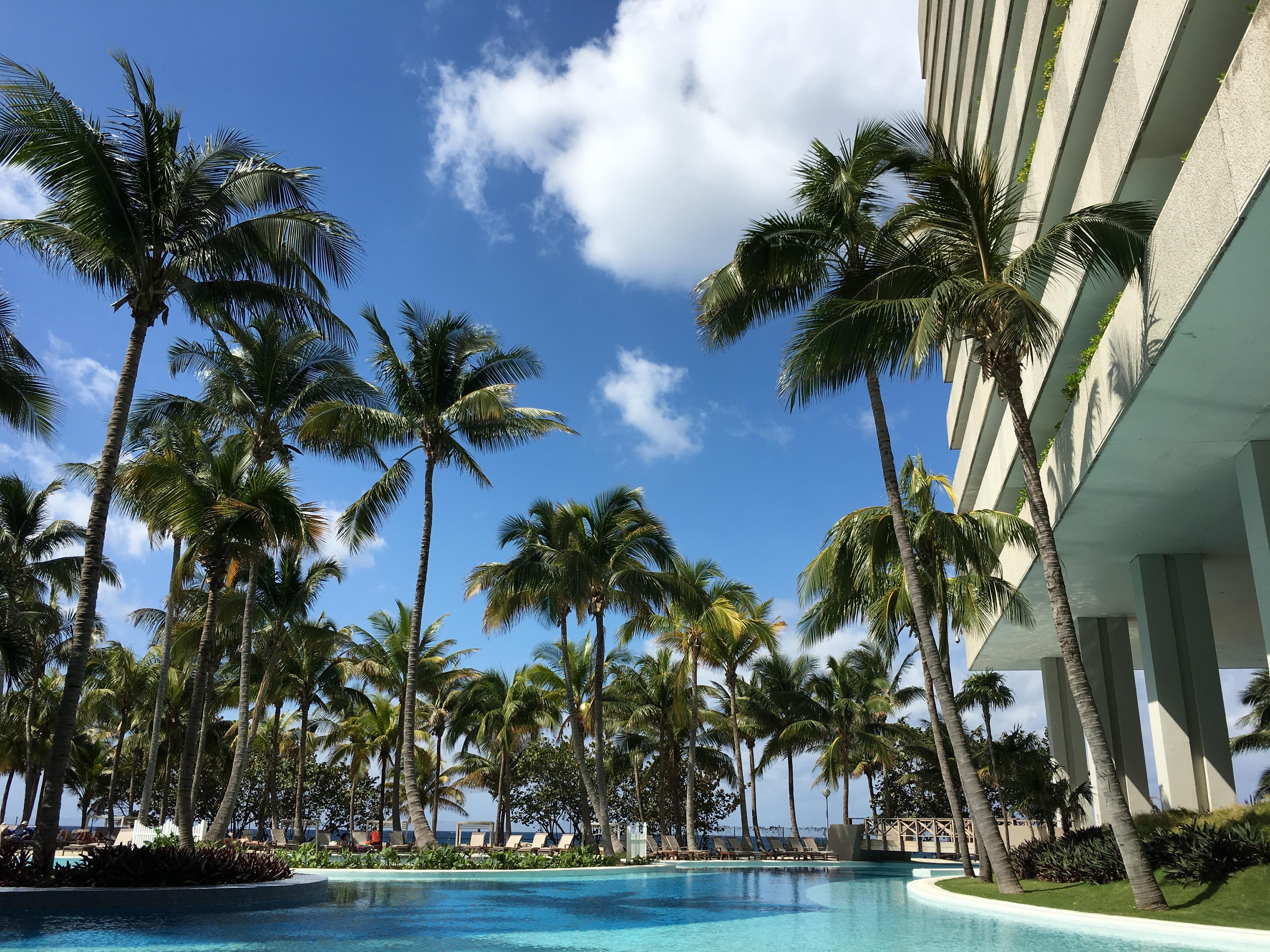"""""""Melia Habana Hotel"""""""